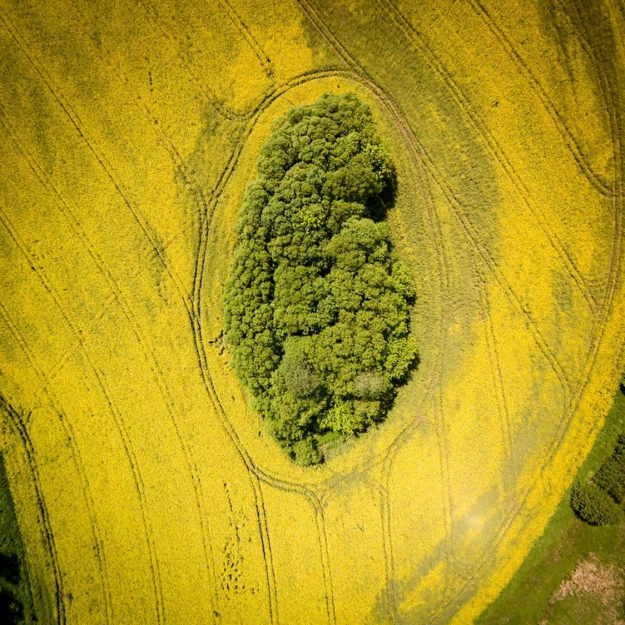 world-from-the-birdseye-view...-2__880